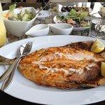 halwayoo fish