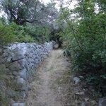 Ancient path on Lopud