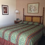 Single queen bed with LCD and best Internet