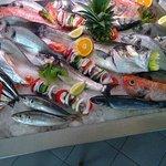 O melhor Peixe Fresco da Região!