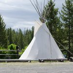 Teepee for rent