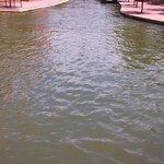 Riverwalk in Pueblo, CO