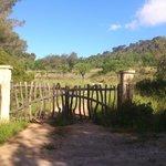 CR5 Calvia - Son Font - Galilea Trail