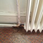 Suite 219 Water damaged carpet and rusted pipes...