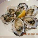 Tasmania oyster