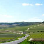 Scenic road at the Champagne region