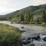 river near the ranch