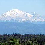 View of Mt Baker from Blackberry Trails B&B