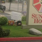 Here's the homeless man out front.  Yikes!