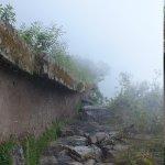 Trail to the drawbridge in the fog