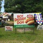 Hot Diggiddy Dog