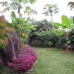 Vue jardin chambre Coco Sec