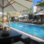 MNH3 Pool2
