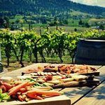 Experience Wine Tours-Day Tours