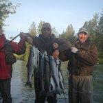Sockeye Salmon June 24, 2013