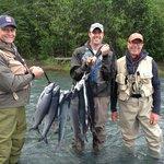 Sockeye Salmon on Kenai River-June 24, 2013