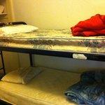 dorm bunks