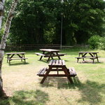 Lovely beer garden with views of The Derwent Country Park