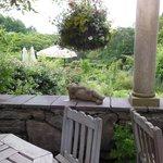 怠惰なクマ。お庭の所々にこんな(笑)がある