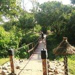 bridge to the camp