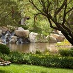 As weather permits, our yoga instructors take classes outside to our lush grounds.