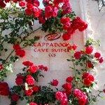 Flowers, roses, everywhere
