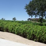 Foto di Wine Country RV Resort