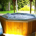 Your Bed and Breakfast Hottub