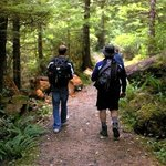 Photo de Nimpkish Forest B&B