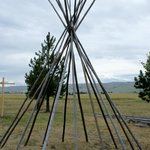 poles waiting for the tee pee hide covering