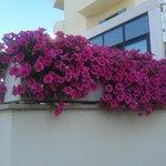 Foto de Hotel Ancore