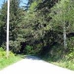 Coastal Drive, gravel road to radar station