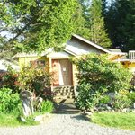 Tofino Travellers Guesthouse front