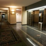 The nice Hallway