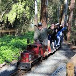 The Mini Railway