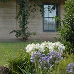 EarthHouse sits amongst beautiful lawns and gardens.