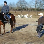 Horse Riding Lessons nearby