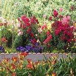 Flower Garden at the Burton Inn
