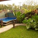 Vue de la piscine et du jardin