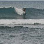 Pacifico surf