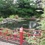 Nice garden...