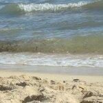 recht sauberer strand