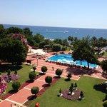 Club Med, Palmiye