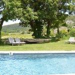 Pool looking towards neighbouring vineyard
