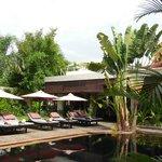 jardin pool