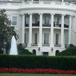 Stroll to White House