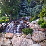 Beautiful Landscaping behind the hotel. Great place to relax