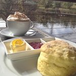 coffee & scones with jam & cream overlooking the beautiful dam at birds of Eden! what a treat!