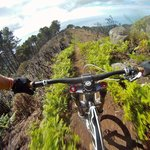 One of Madeira's most successful downhill track