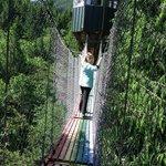 Rainbow bridge to observation